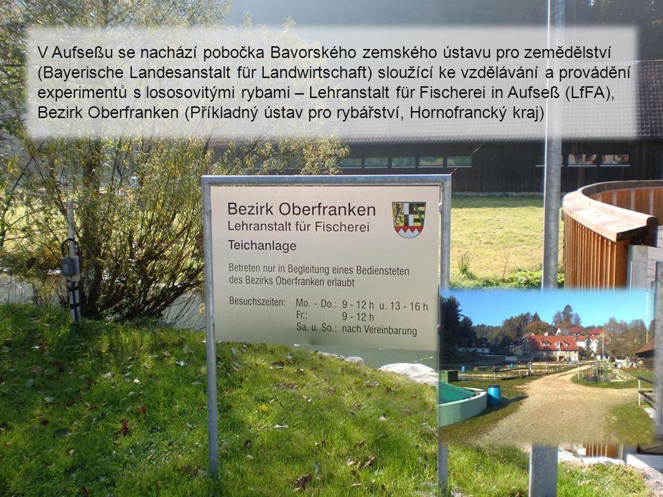 b4ib4i Všechny vodní plochy spadající pod LfFA vlastní baron Freiherr von Aufseß, jehož sídlo je jedinou významnou kulturní památkou v této vesničce Celý region Oberfranken je proslulý hlavně produkcí piva Světový rekord 4 pivovary na 1500 obyvatel dosud nebyl překonán