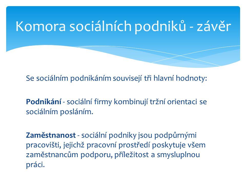 Se sociálním podnikáním souvisejí tři hlavní hodnoty: Podnikání - sociální firmy kombinují tržní orientaci se sociálním posláním. Zaměstnanost - sociá