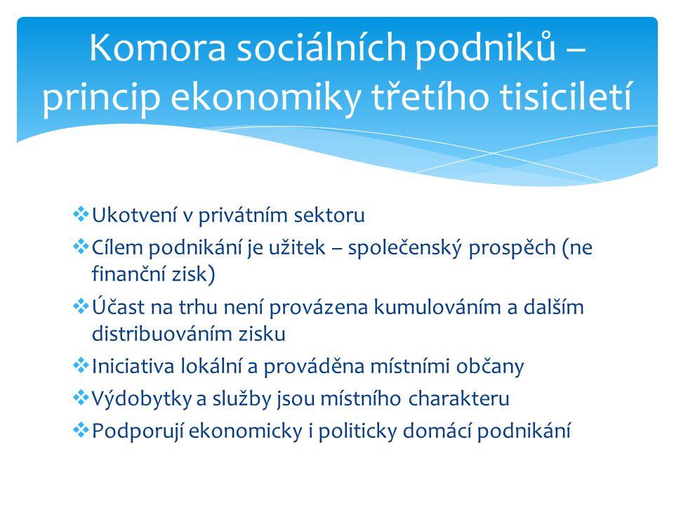  Ukotvení v privátním sektoru  Cílem podnikání je užitek – společenský prospěch (ne finanční zisk)  Účast na trhu není provázena kumulováním a dalš