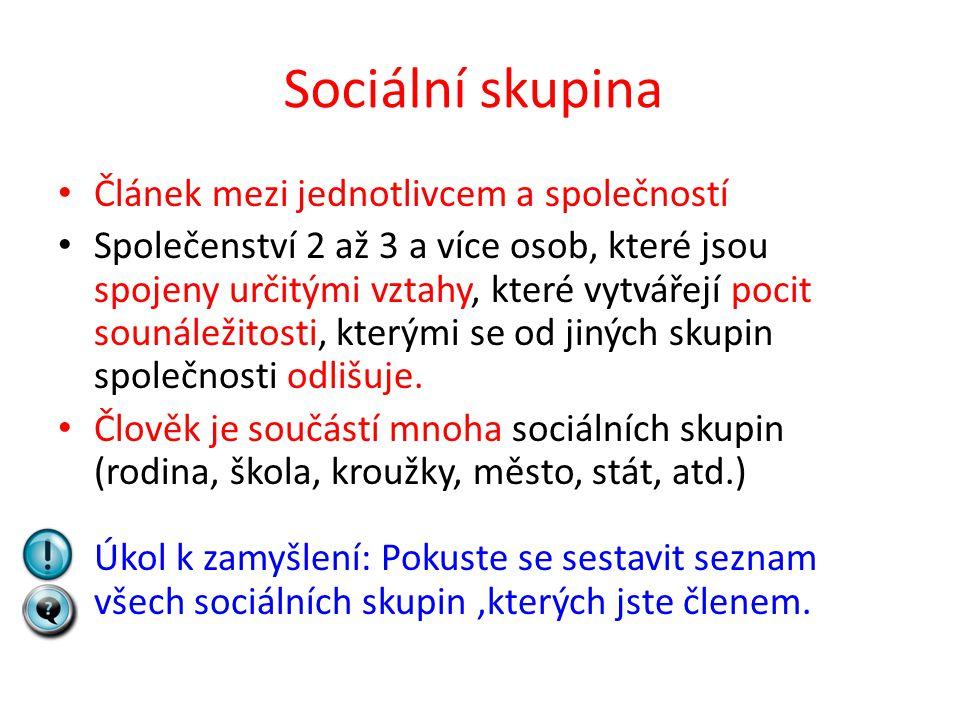 Sociální skupina Článek mezi jednotlivcem a společností Společenství 2 až 3 a více osob, které jsou spojeny určitými vztahy, které vytvářejí pocit sou