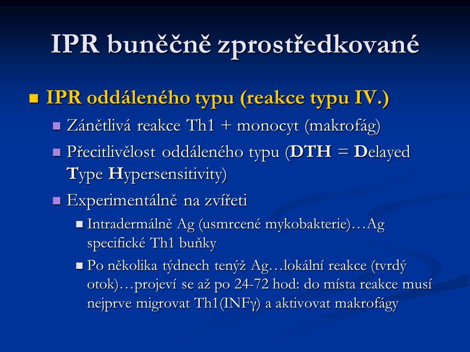 IPR buněčně zprostředkované IPR oddáleného typu (reakce typu IV.) IPR oddáleného typu (reakce typu IV.) Zánětlivá reakce Th1 + monocyt (makrofág) Záně