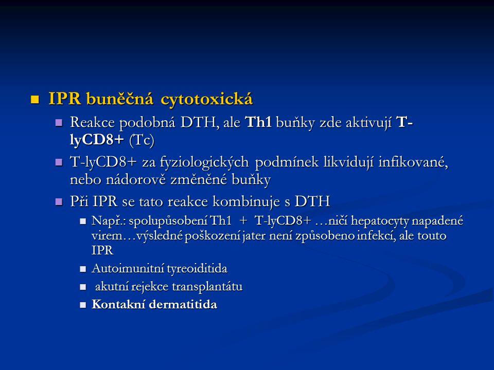 IPR buněčná cytotoxická IPR buněčná cytotoxická Reakce podobná DTH, ale Th1 buňky zde aktivují T- lyCD8+ (Tc) Reakce podobná DTH, ale Th1 buňky zde ak