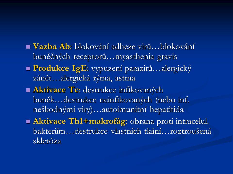 Vazba Ab: blokování adheze virů…blokování buněčných receptorů…myasthenia gravis Vazba Ab: blokování adheze virů…blokování buněčných receptorů…myasthen