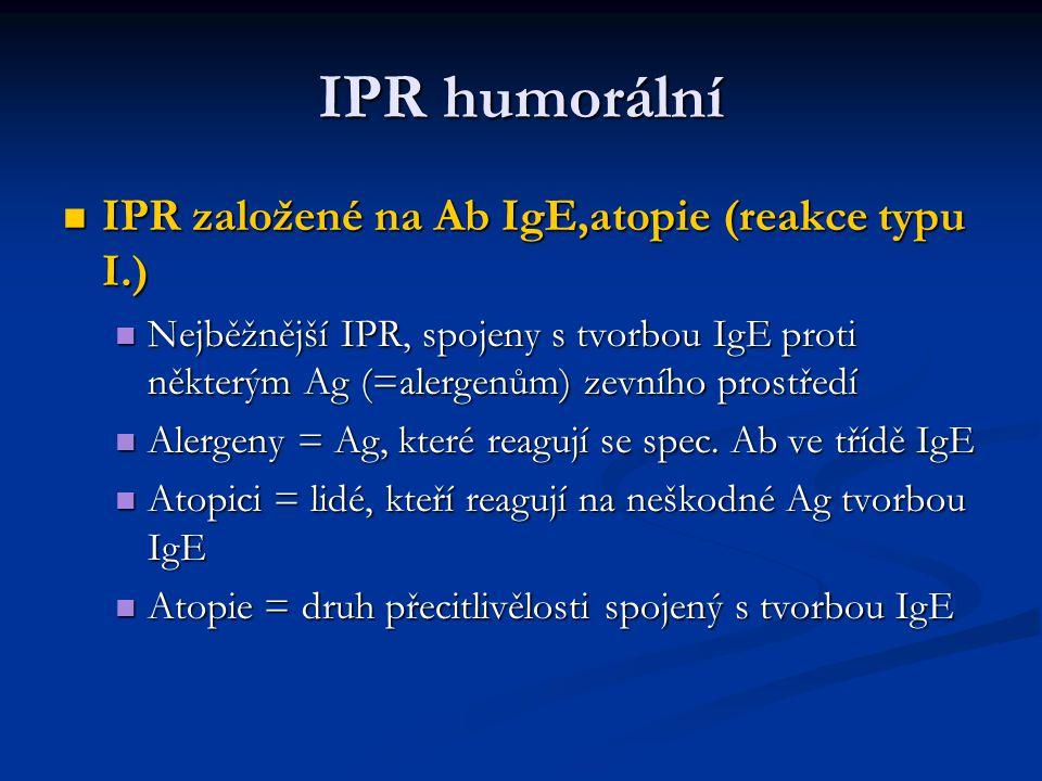 IPR humorální IPR založené na Ab IgE,atopie (reakce typu I.) IPR založené na Ab IgE,atopie (reakce typu I.) Nejběžnější IPR, spojeny s tvorbou IgE pro