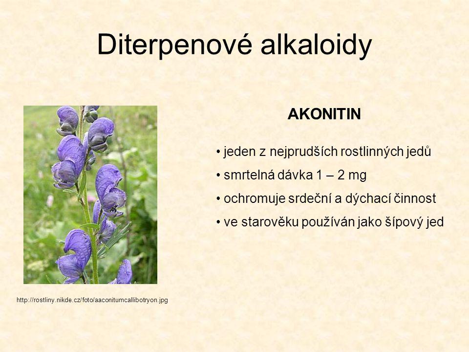 Diterpenové alkaloidy AKONITIN http://rostliny.nikde.cz/foto/aaconitumcallibotryon.jpg jeden z nejprudších rostlinných jedů smrtelná dávka 1 – 2 mg oc