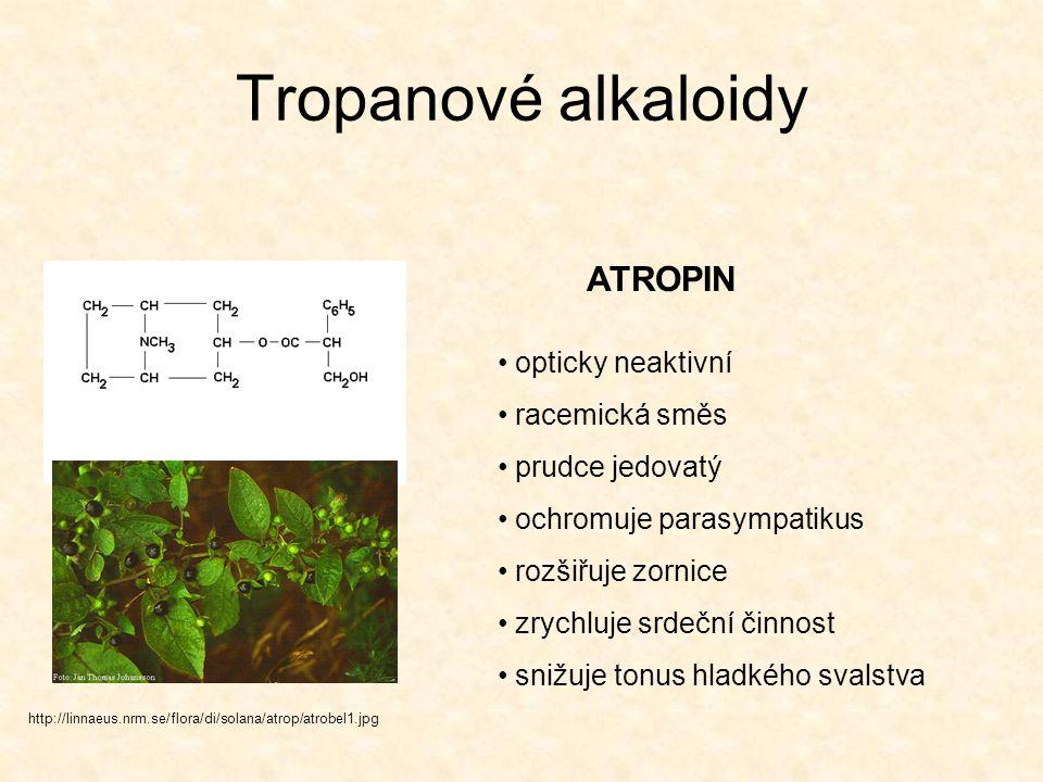Tropanové alkaloidy http://linnaeus.nrm.se/flora/di/solana/atrop/atrobel1.jpg opticky neaktivní racemická směs prudce jedovatý ochromuje parasympatiku