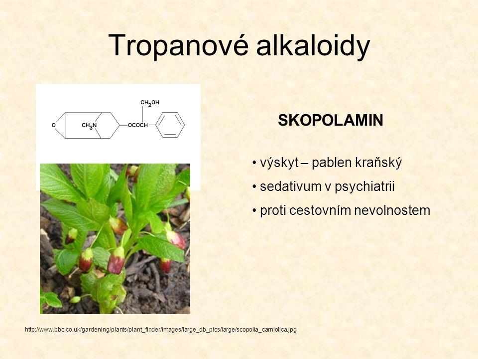Tropanové alkaloidy http://varasto.syl.helsinki.fi/juttupankki/kuvat/koka.jpg KOKAIN původní využití – lokální anestetikum zneužíván jako narkotikum účinky na CNS: počáteční euforii vystřídá deprese, přicházejí halucinace a nakonec se může rozvinout paranoidní psychóza,