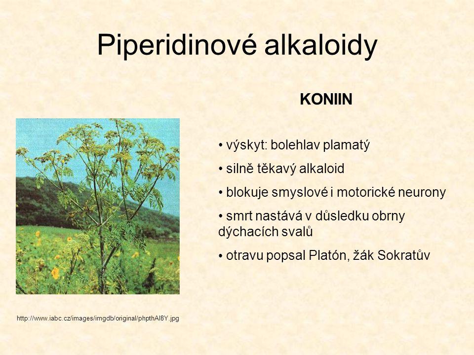 Piperidinové alkaloidy KONIIN http://www.iabc.cz/images/imgdb/original/phpthAl8Y.jpg výskyt: bolehlav plamatý silně těkavý alkaloid blokuje smyslové i