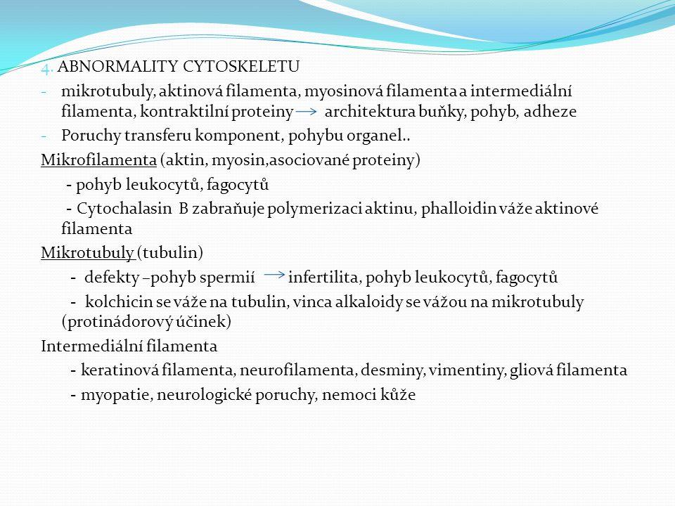 4. ABNORMALITY CYTOSKELETU - mikrotubuly, aktinová filamenta, myosinová filamenta a intermediální filamenta, kontraktilní proteiny architektura buňky,