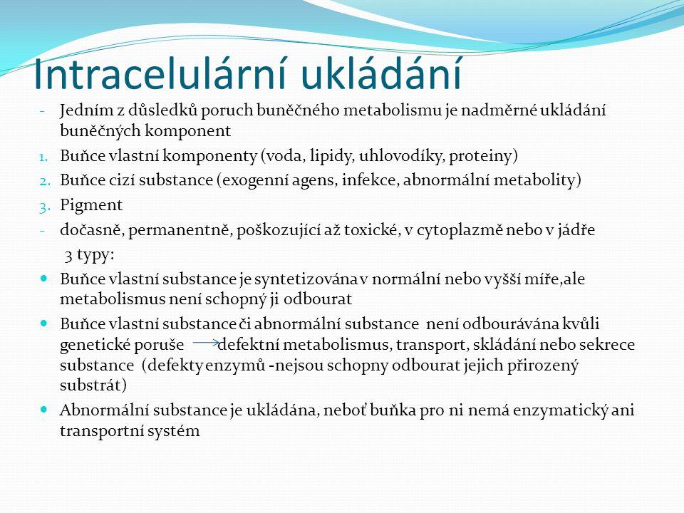 Intracelulární ukládání - Jedním z důsledků poruch buněčného metabolismu je nadměrné ukládání buněčných komponent 1. Buňce vlastní komponenty (voda, l