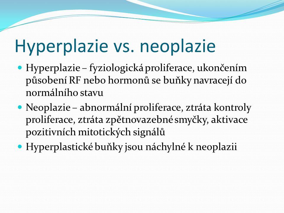 Hyperplazie vs. neoplazie Hyperplazie – fyziologická proliferace, ukončením působení RF nebo hormonů se buňky navracejí do normálního stavu Neoplazie