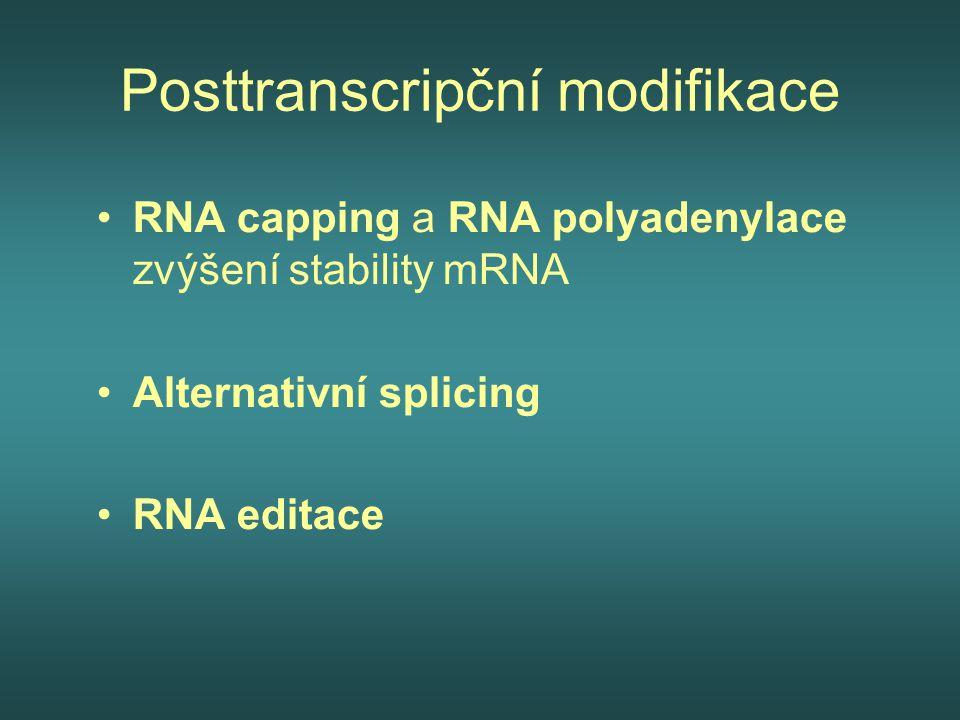 Posttranscripční modifikace RNA capping a RNA polyadenylace zvýšení stability mRNA Alternativní splicing RNA editace