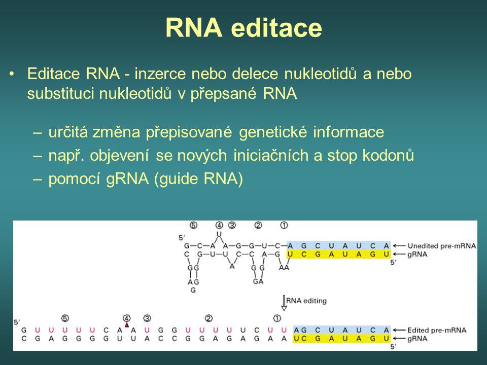 RNA editace Editace RNA - inzerce nebo delece nukleotidů a nebo substituci nukleotidů v přepsané RNA –určitá změna přepisované genetické informace –na