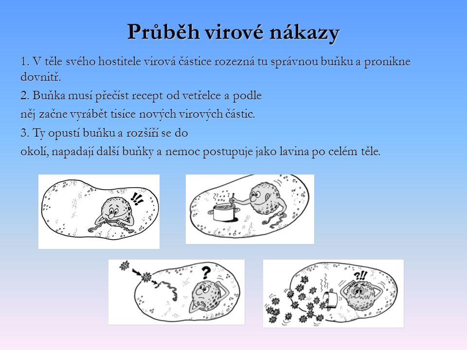 Průběh virové nákazy 1. V těle svého hostitele virová částice rozezná tu správnou buňku a pronikne dovnitř. 2. Buňka musí přečíst recept od vetřelce a