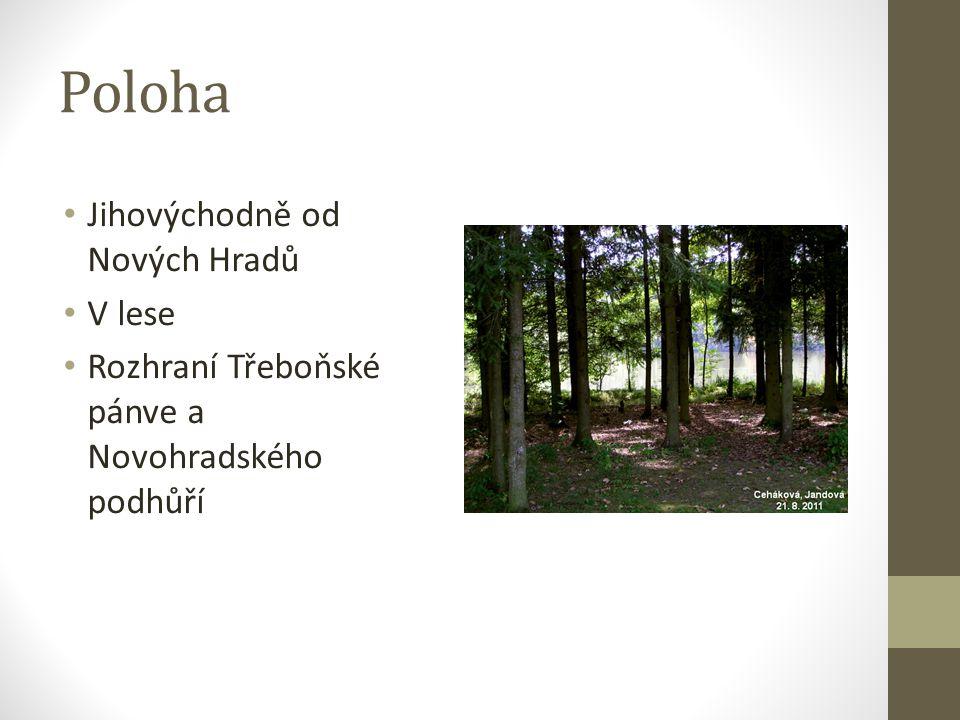 Poloha Jihovýchodně od Nových Hradů V lese Rozhraní Třeboňské pánve a Novohradského podhůří