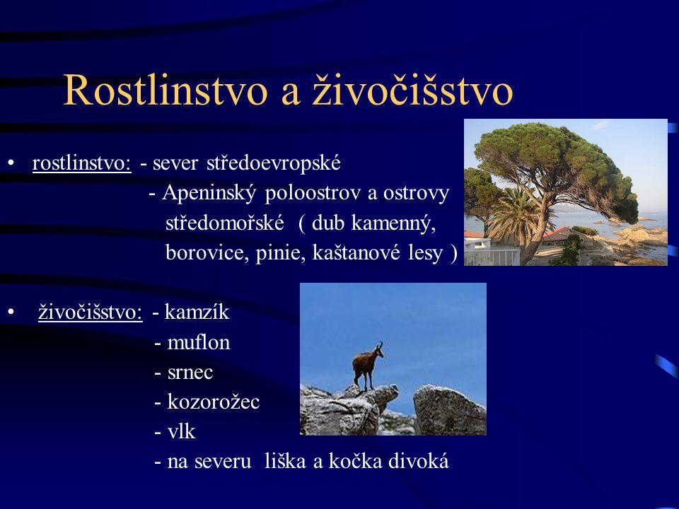 Rostlinstvo a živočišstvo rostlinstvo: - sever středoevropské - Apeninský poloostrov a ostrovy středomořské ( dub kamenný, borovice, pinie, kaštanové lesy ) živočišstvo: - kamzík - muflon - srnec - kozorožec - vlk - na severu liška a kočka divoká