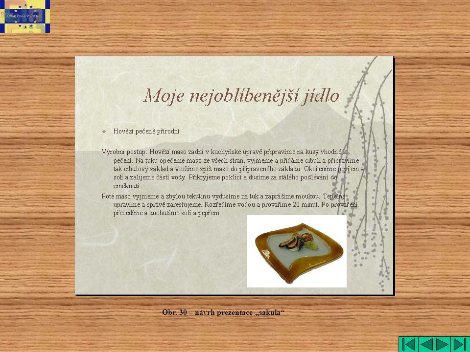 """Obr. 30 – návrh prezentace """"sakula"""""""