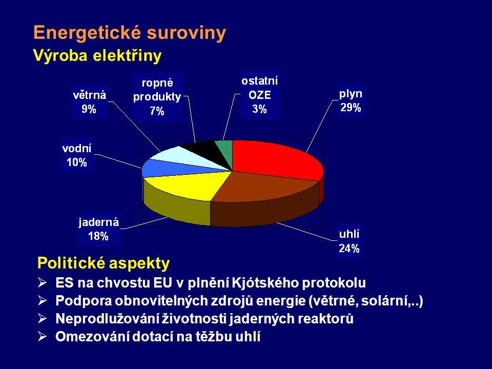 Politické aspekty  ES na chvostu EU v plnění Kjótského protokolu  Podpora obnovitelných zdrojů energie (větrné, solární,..)  Neprodlužování životnosti jaderných reaktorů  Omezování dotací na těžbu uhlí Výroba elektřiny Energetické suroviny