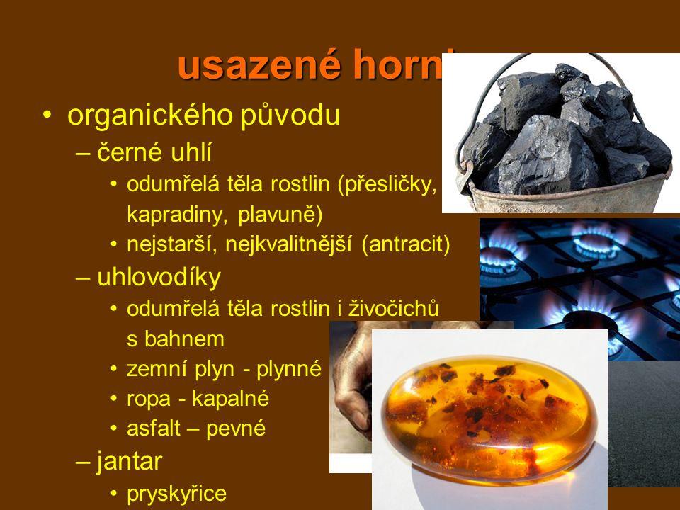 usazené horniny organického původu –černé uhlí odumřelá těla rostlin (přesličky, kapradiny, plavuně) nejstarší, nejkvalitnější (antracit) –uhlovodíky