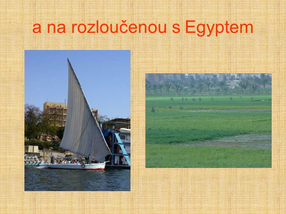 a na rozloučenou s Egyptem