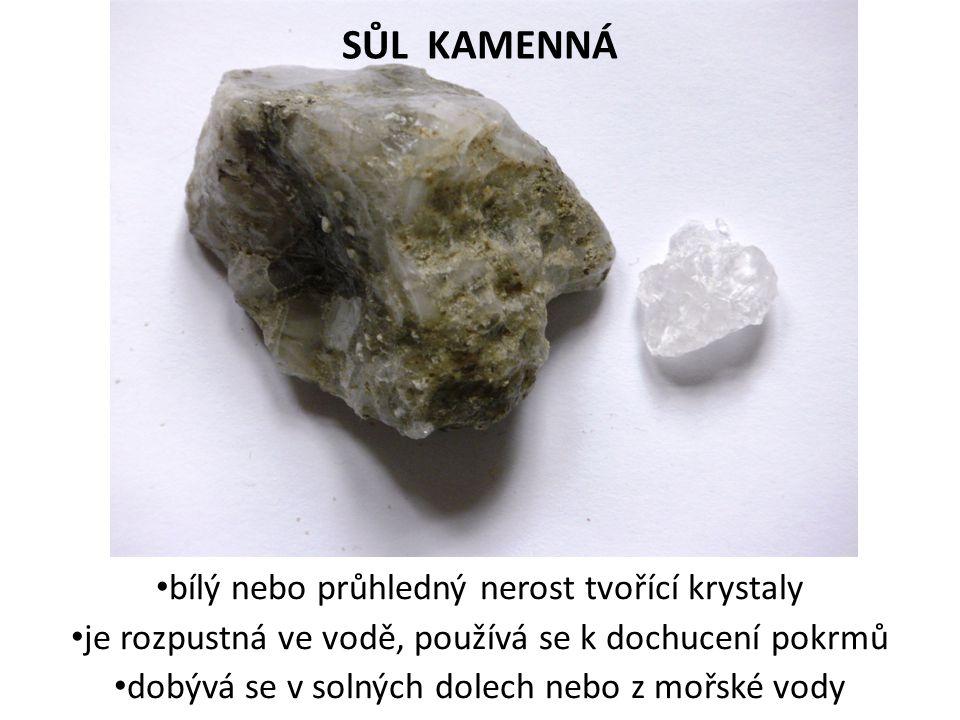 SŮL KAMENNÁ bílý nebo průhledný nerost tvořící krystaly je rozpustná ve vodě, používá se k dochucení pokrmů dobývá se v solných dolech nebo z mořské v