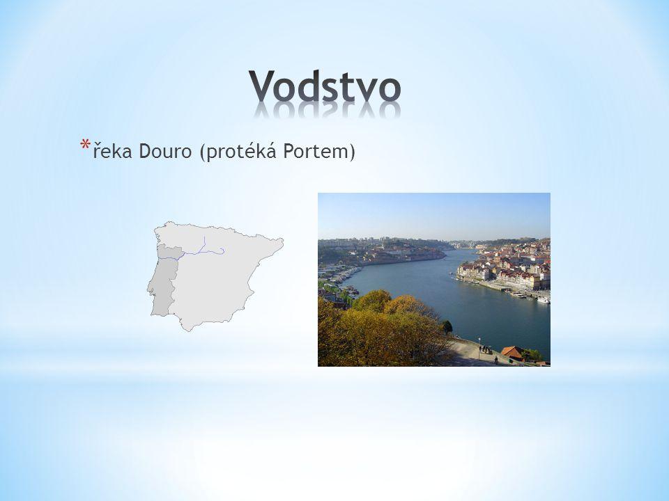 * řeka Douro (protéká Portem)