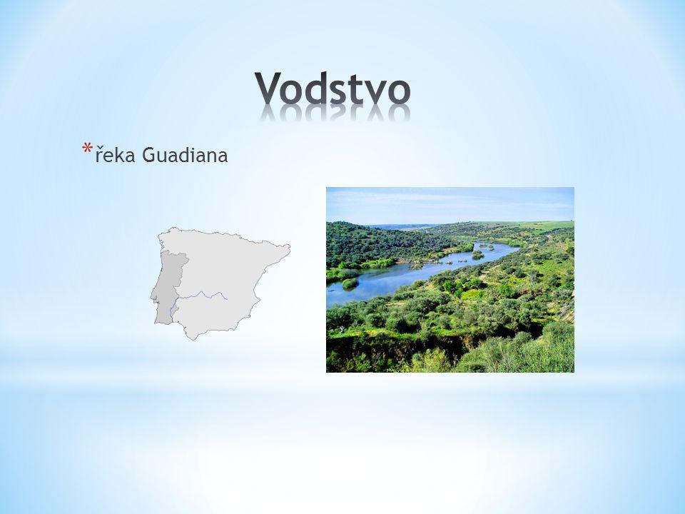 * řeka Guadiana
