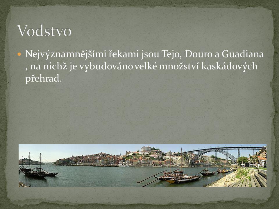 Nejvýznamnějšími řekami jsou Tejo, Douro a Guadiana, na nichž je vybudováno velké množství kaskádových přehrad.