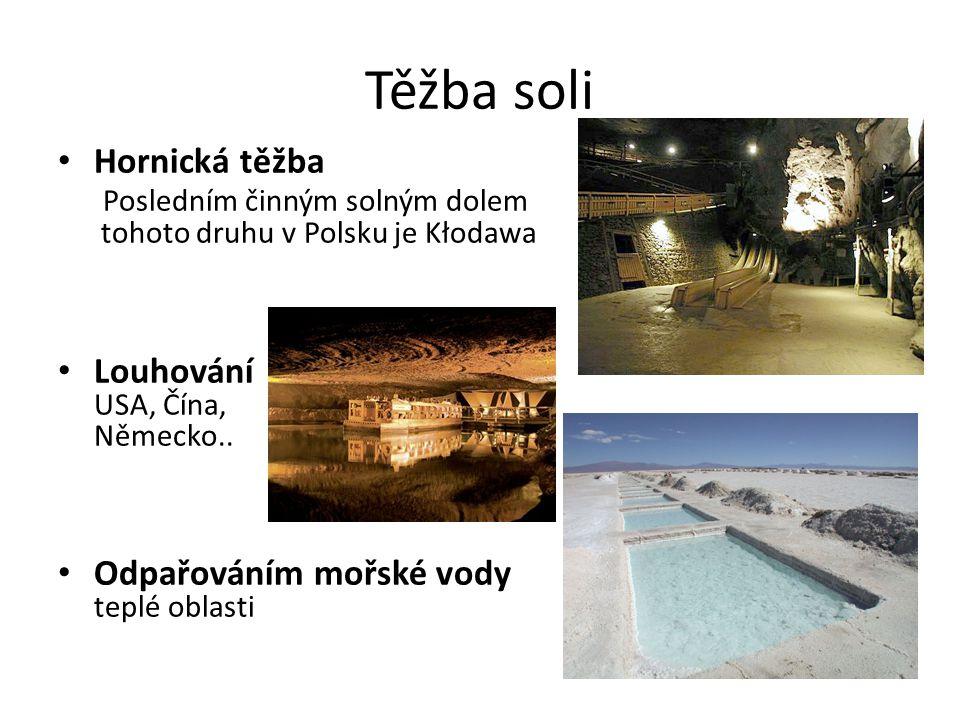 Těžba soli Hornická těžba Posledním činným solným dolem tohoto druhu v Polsku je Kłodawa Louhování USA, Čína, Německo.. Odpařováním mořské vody teplé