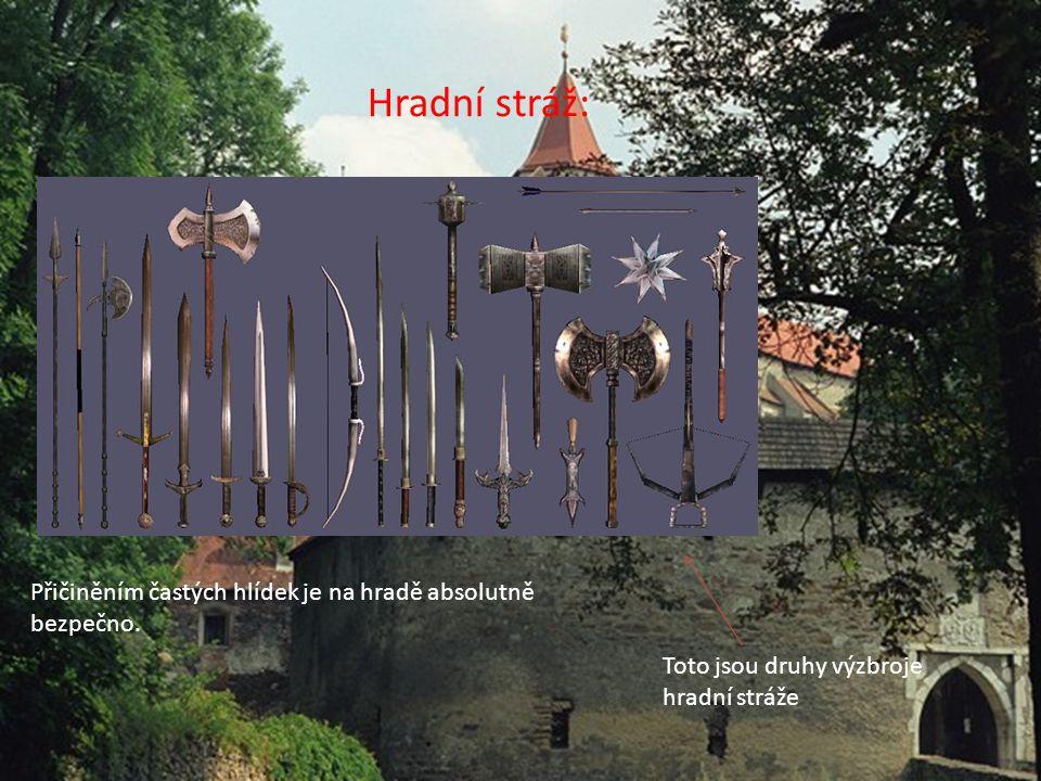 Hradní stráž: Toto jsou druhy výzbroje hradní stráže Přičiněním častých hlídek je na hradě absolutně bezpečno.