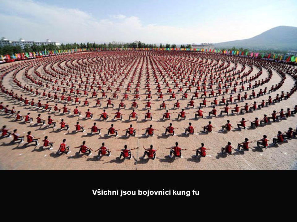 Všichni jsou bojovníci kung fu
