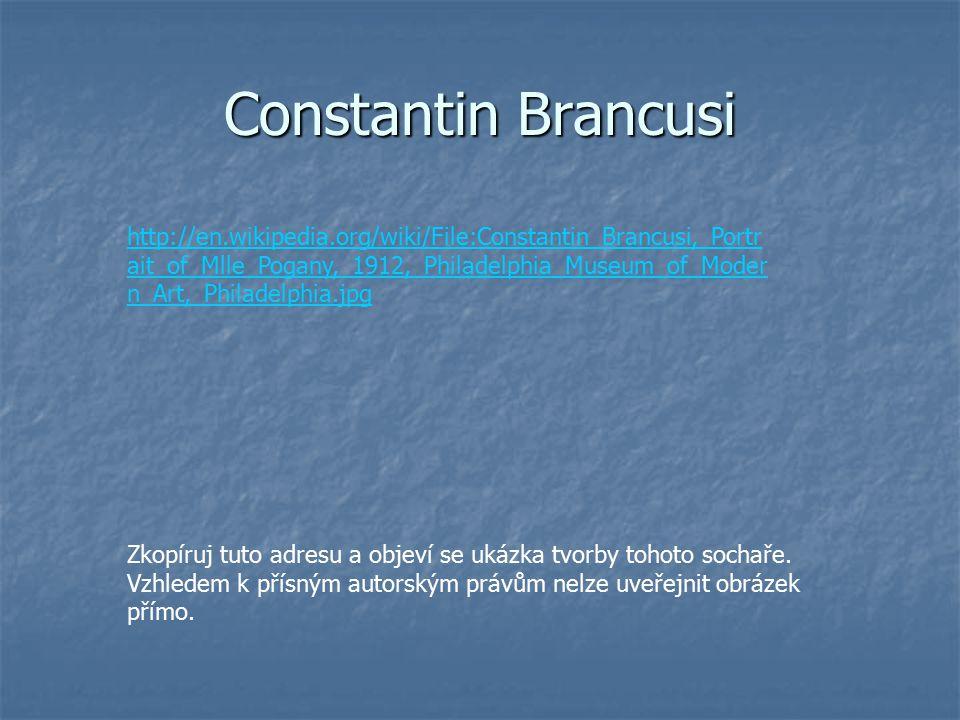 Constantin Brancusi http://en.wikipedia.org/wiki/File:Constantin_Brancusi,_Portr ait_of_Mlle_Pogany,_1912,_Philadelphia_Museum_of_Moder n_Art,_Philadelphia.jpg Zkopíruj tuto adresu a objeví se ukázka tvorby tohoto sochaře.