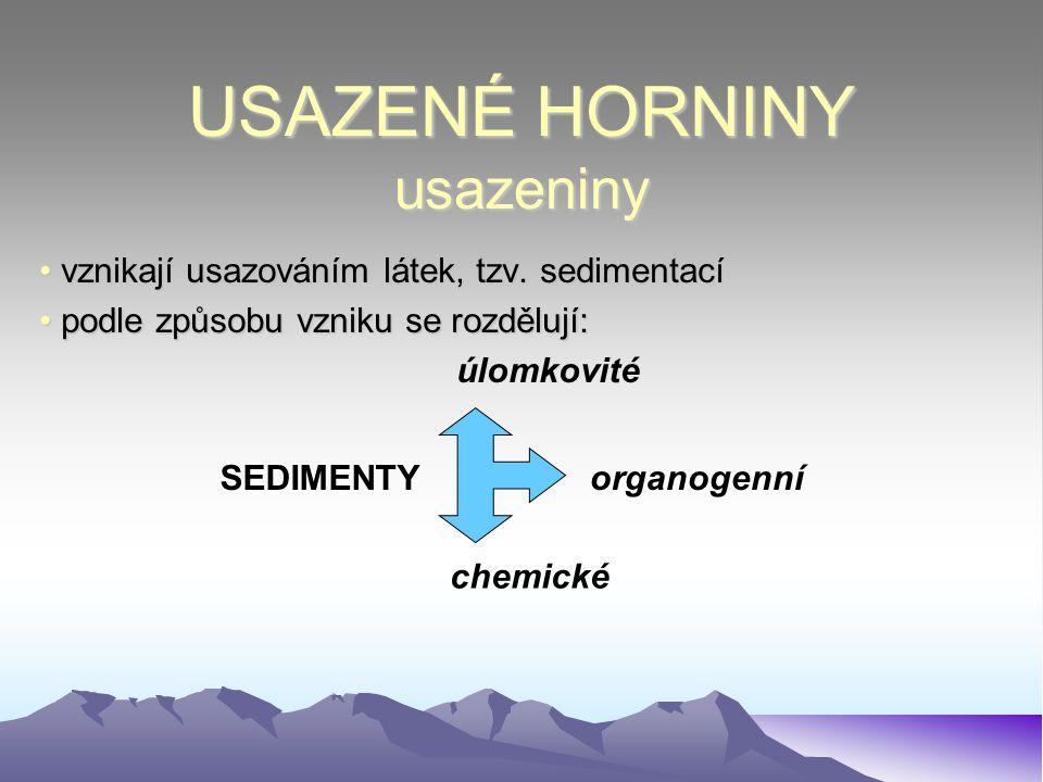 USAZENÉ HORNINY usazeniny vznikají usazováním látek, tzv. sedimentací vznikají usazováním látek, tzv. sedimentací podle způsobu vzniku se rozdělují: p