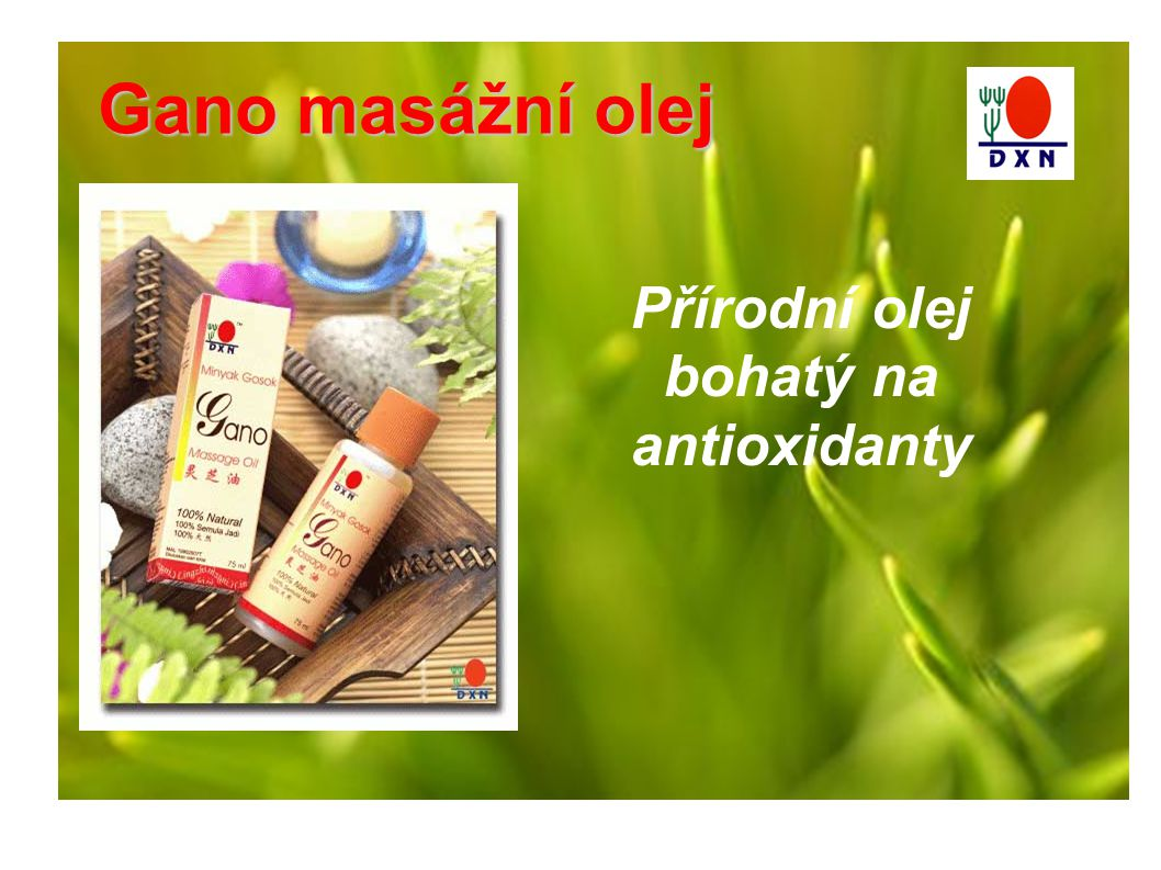 Gano masážní olej Přírodní olej bohatý na antioxidanty