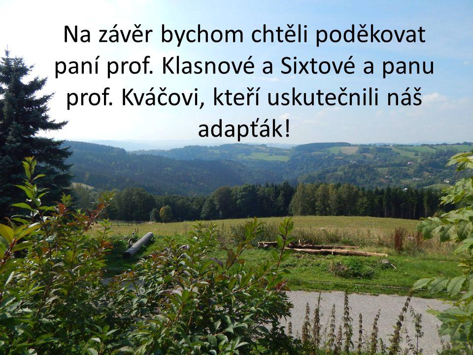 Na závěr bychom chtěli poděkovat paní prof. Klasnové a Sixtové a panu prof. Kváčovi, kteří uskutečnili náš adapťák!