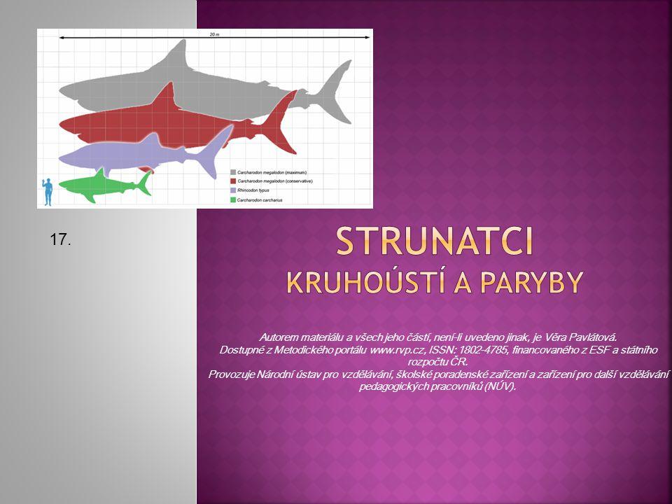 Úkol: Vypište 3 místa, kde se může objevit žralok obrovský. 23.