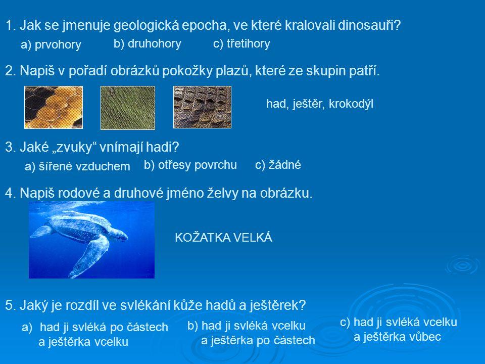 1. Jak se jmenuje geologická epocha, ve které kralovali dinosauři? a) prvohory b) druhohory c) třetihory 2. Napiš v pořadí obrázků pokožky plazů, kter