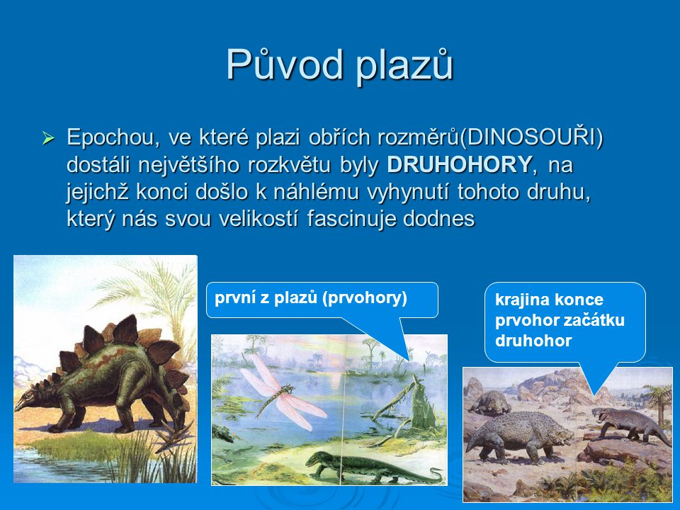 Původ plazů  Epochou, ve které plazi obřích rozměrů(DINOSOUŘI) dostáli největšího rozkvětu byly DRUHOHORY, na jejichž konci došlo k náhlému vyhynutí