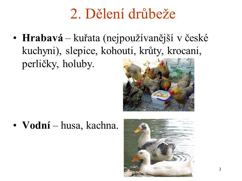 2. Dělení drůbeže Hrabavá – kuřata (nejpoužívanější v české kuchyni), slepice, kohouti, krůty, krocani, perličky, holuby. Vodní – husa, kachna. 3