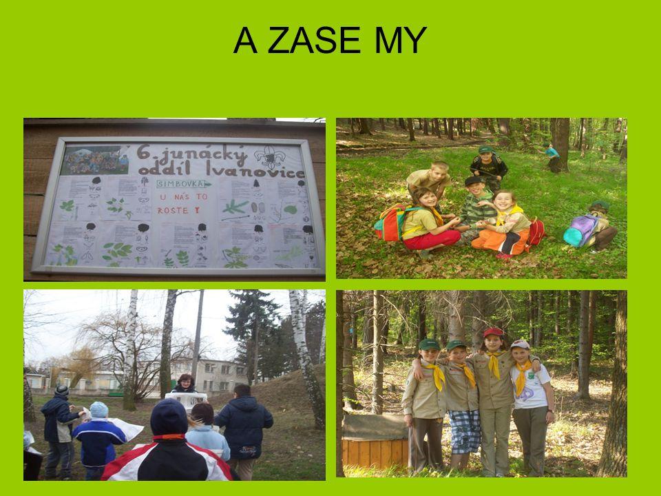 A ZASE MY