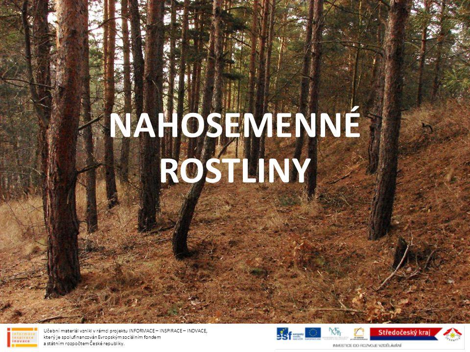 TAJGA pás jehličnatých lesů na severní polokouli celistvý ekosystém, na Sibiři tvoří nepropustné pralesy stromy: modřín, smrk, borovice, bříza zvířata: medvěd, vlk, zubr, rosomák, jelen, los, rys, veverka… Učební materiál vznikl v rámci projektu INFORMACE – INSPIRACE – INOVACE, který je spolufinancován Evropským sociálním fondem a státním rozpočtem České republiky.