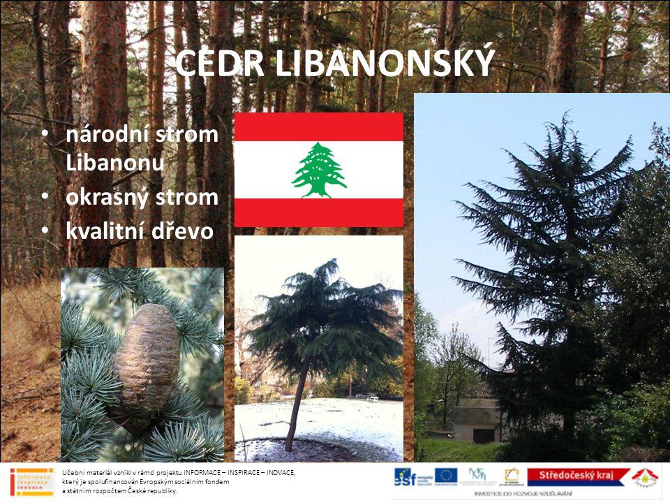 CEDR LIBANONSKÝ národní strom Libanonu okrasný strom kvalitní dřevo Učební materiál vznikl v rámci projektu INFORMACE – INSPIRACE – INOVACE, který je