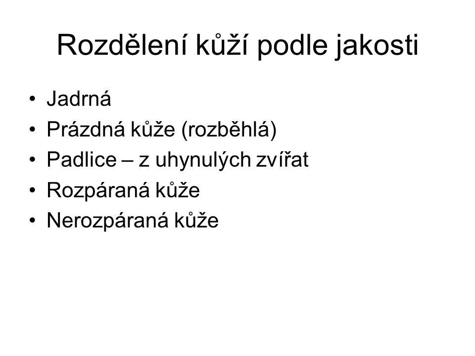 Koželužské zpracování kůže 2.