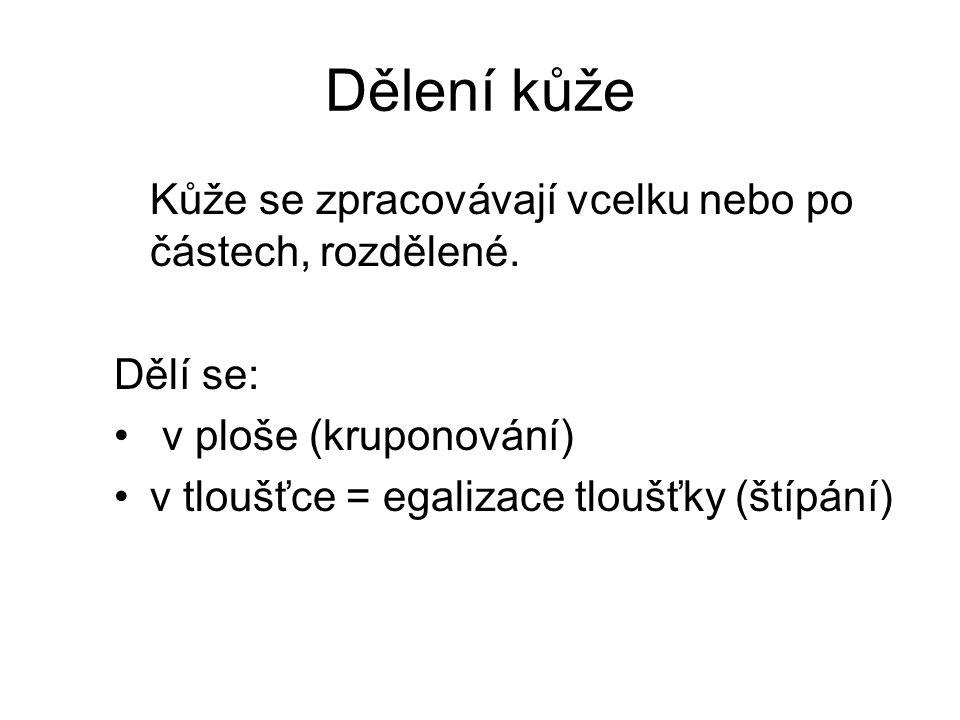 Koželužské zpracování kůže 3.