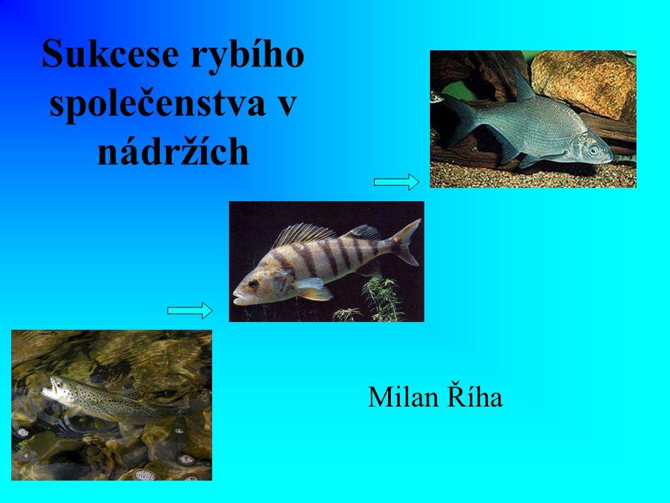 Sukcese rybího společenstva v nádržích Milan Říha
