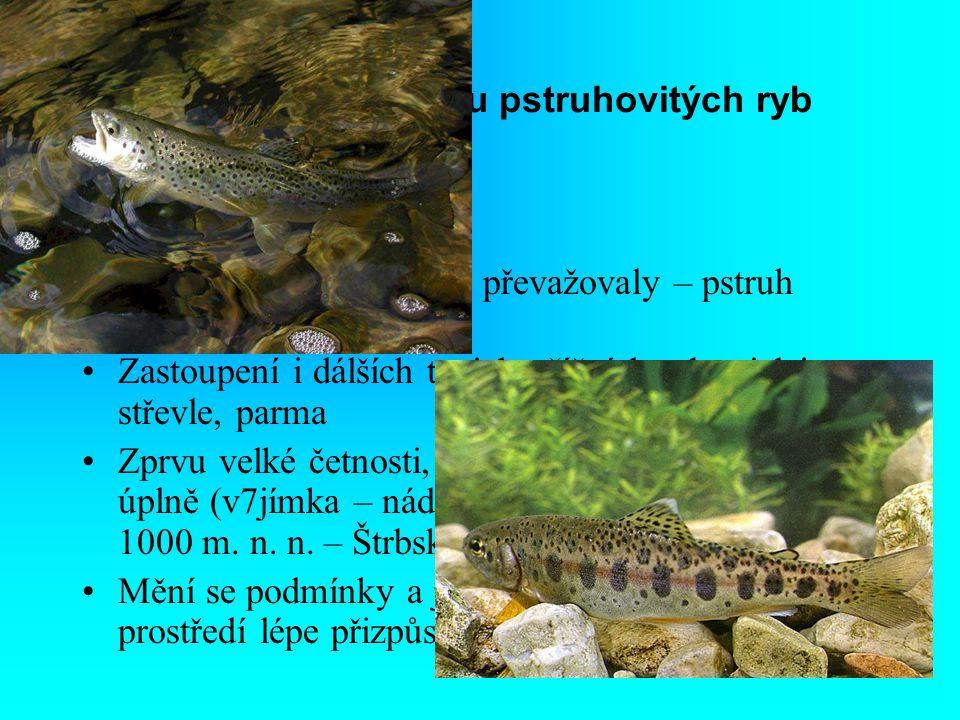 1. Fáze s převahou pstruhovitých ryb Raná fáze vývoje V toku kde pstruh. ryby převažovaly – pstruh obecný a duhový Zastoupení i dálších typicky říčníc