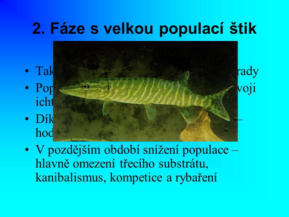 2. Fáze s velkou populací štik Také raná fáze, záhy po napuštění přehrady Populace dvakrát větší než v dalším vývoji ichtyofauny Díky zaplavení terest