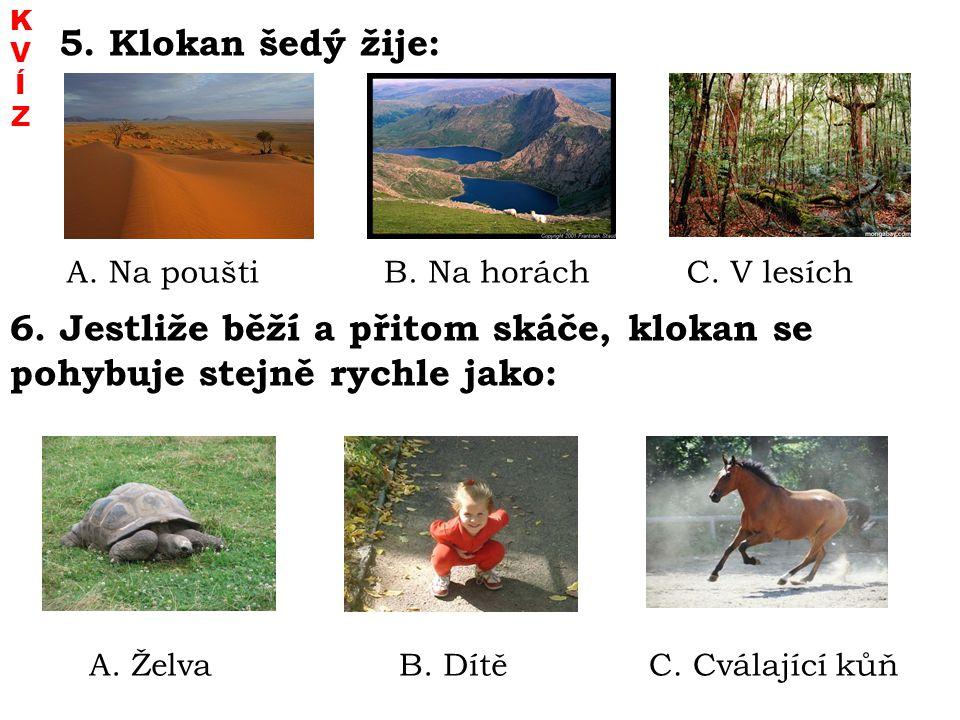 5. Klokan šedý žije: A. Na pouštiB. Na horáchC. V lesích 6. Jestliže běží a přitom skáče, klokan se pohybuje stejně rychle jako: A. ŽelvaB. DítěC. Cvá