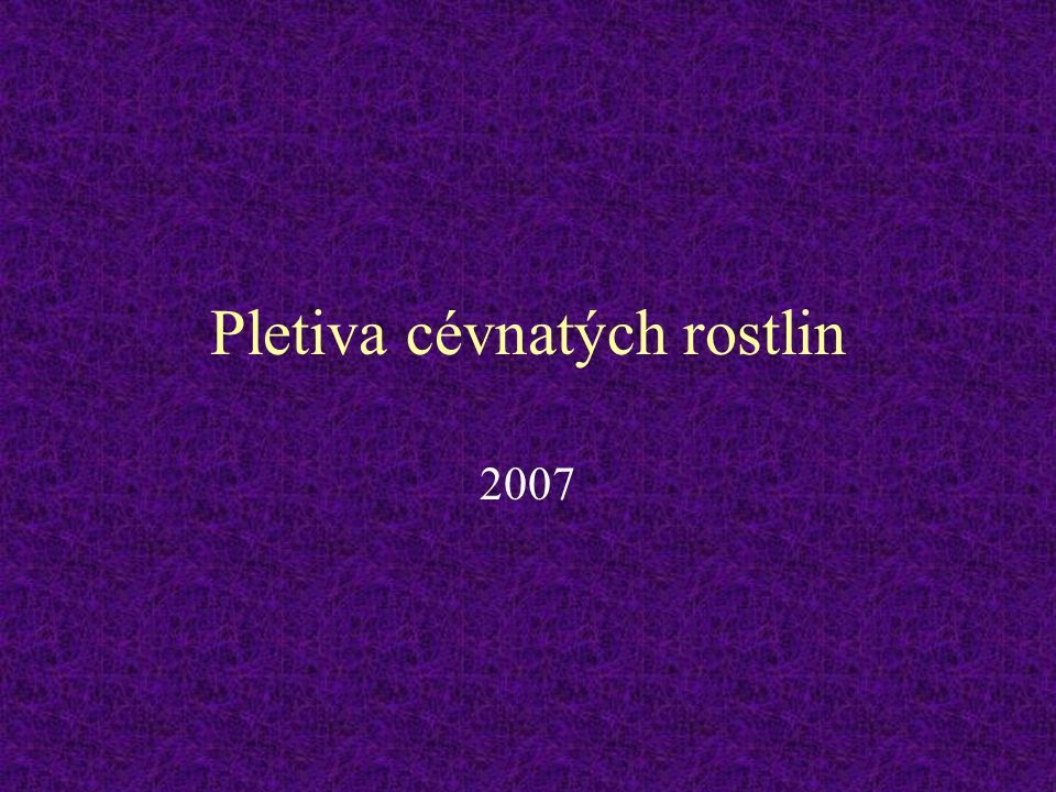 Pletiva cévnatých rostlin 2007