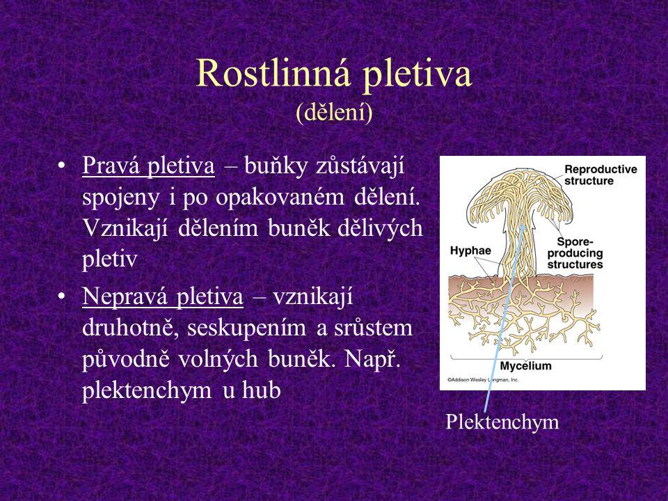 Rostlinná pletiva (dělení) Pravá pletiva – buňky zůstávají spojeny i po opakovaném dělení. Vznikají dělením buněk dělivých pletiv Nepravá pletiva – vz
